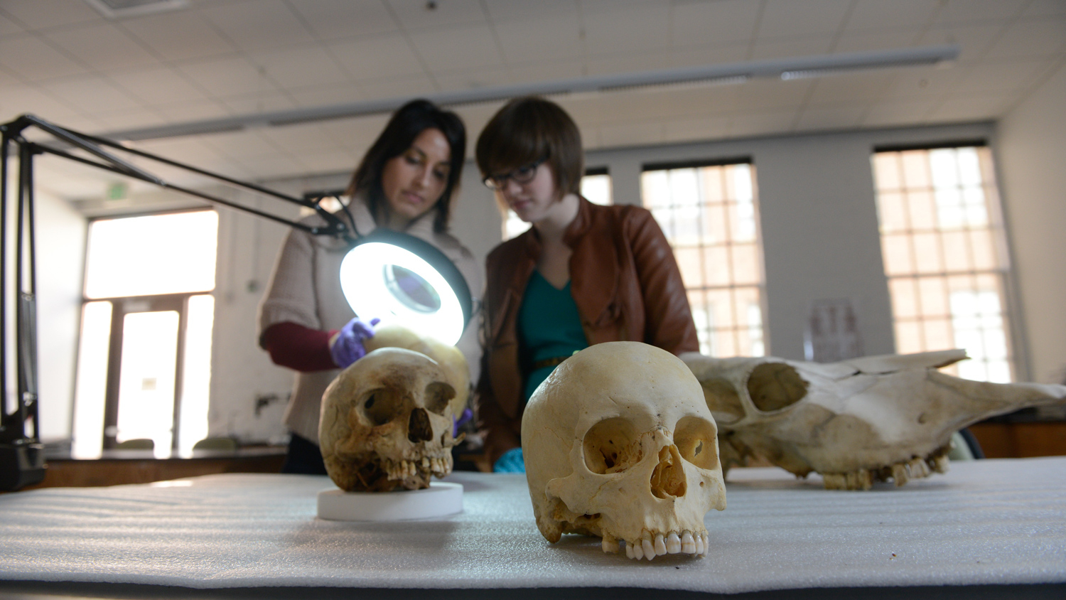 Professor Ann Ross with student